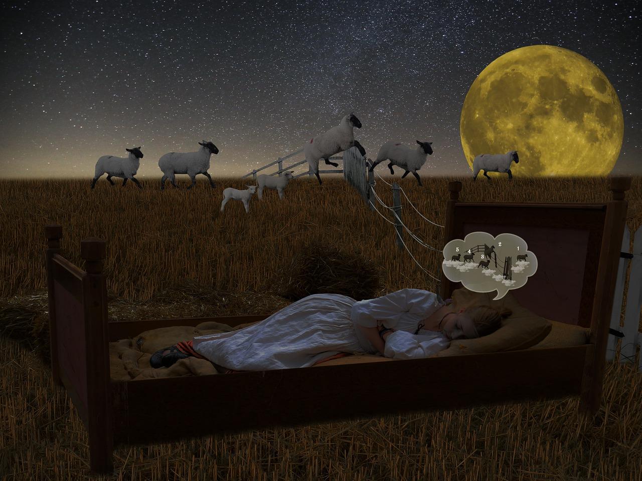 重度の睡眠障害を抱える私が「不眠症」について説明してみた